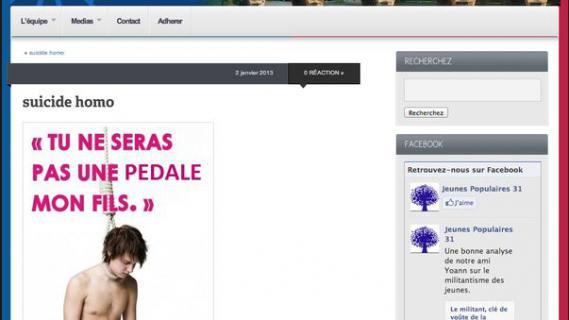 Capture d'écran du site internet de l'UMP Haute-Garonne avant la suppression du visuel choquant, vendredi 25 janvier 2013.
