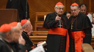 Les cardinaux divisés avant le conclave