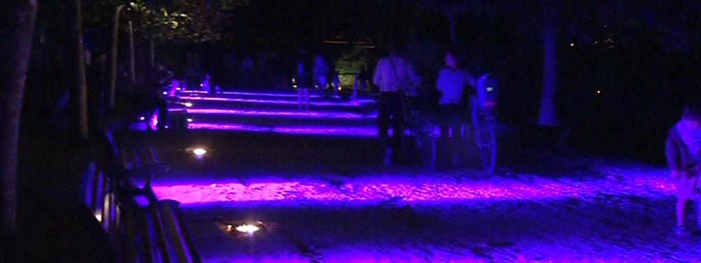 Visite nocturne du jardin des plantes de Nantes