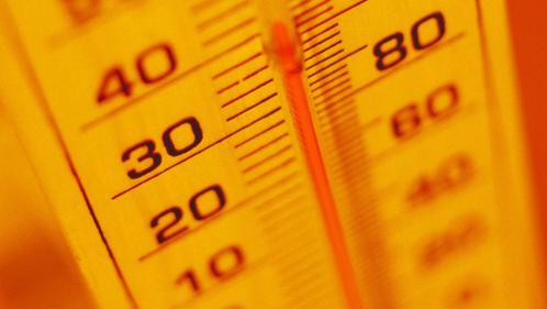 Canicule : petits bobos et gros maux causés par la chaleur