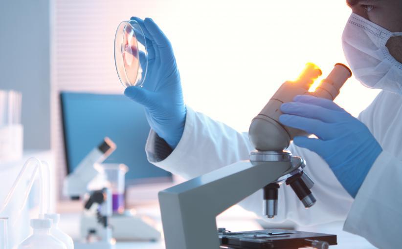 """La journaliste du magazine """"Science"""" en poste à Shanghai, Mara Hvistendahl, révèle l'ampleur d'un scandaleux business des études scientifiques en Chine, dans un article paru vendredi 29 novembre 2013."""