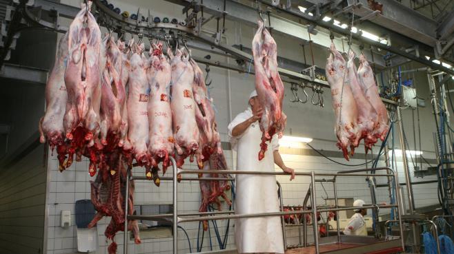 Des moutons abattus à Troyes (Aube), en octobre 2013.