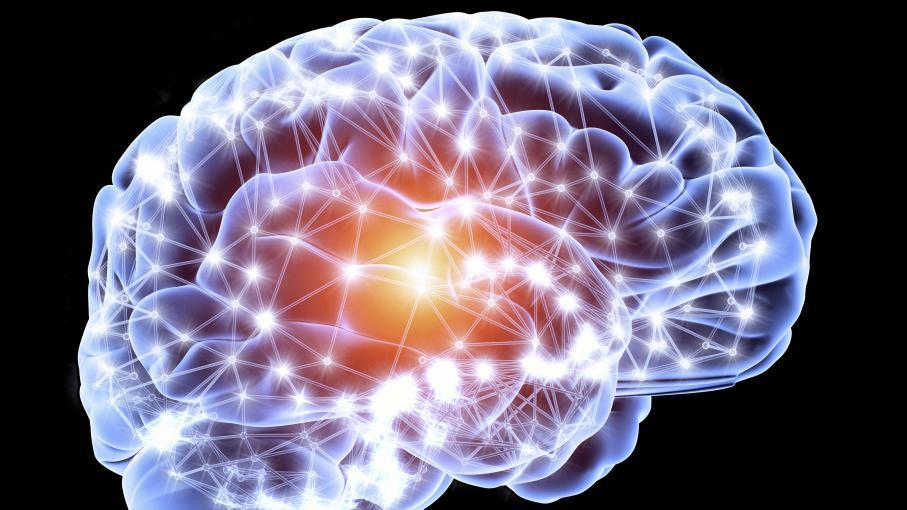 Dormir, manger du fer, jouer de la musique… cinq conseils pour soigner vos neurones 3616901