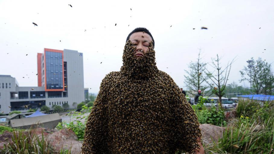 Explore The Beauty Of Caribbean: VIDEO. Chine : Il Se Couvre D'abeilles Durant 53 Minutes
