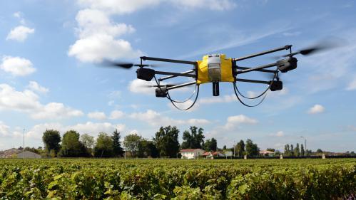 VIDEO. Noël : les drones ont la cote