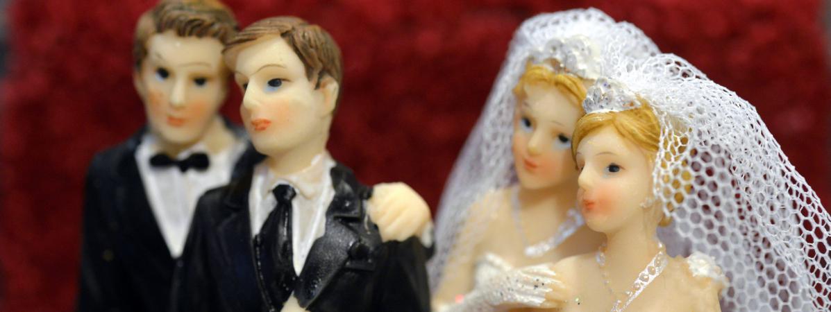 mariage gay et adoption les fran ais majoritairement pour progression chez les sympathisants ump. Black Bedroom Furniture Sets. Home Design Ideas