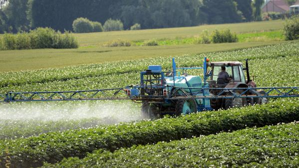 pesticides de plus en plus de jardiniers sensibilises