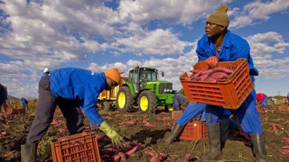 agriculteurs datant de l'Afrique du Sud