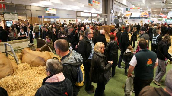 Video le salon de l 39 agriculture paradis des pique assiettes - Nombre de visiteurs salon de l agriculture ...