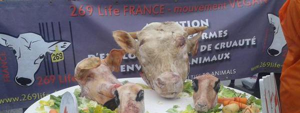 Au salon de l 39 agriculture les manifestants vegans for Salon vegan paris