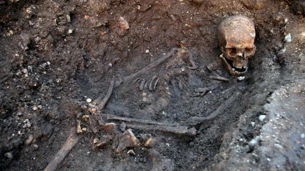 des-squelettes-retrouv%C3%A9s-sous-une-%C3%A9picerie-parisienne-en-plein-coeur-de-paris