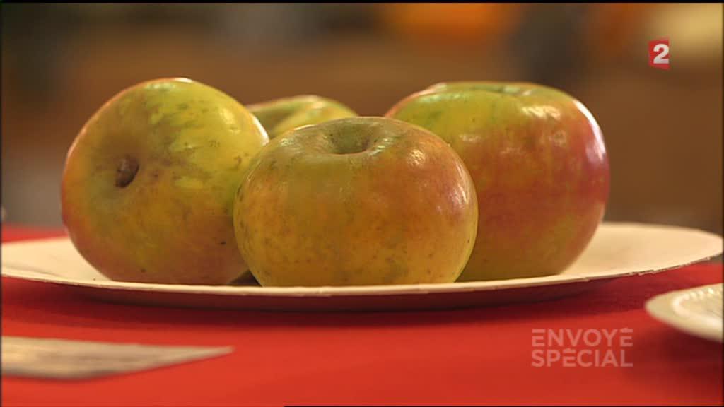 video peut on encore manger des pommes en replay 5 mars 2015. Black Bedroom Furniture Sets. Home Design Ideas