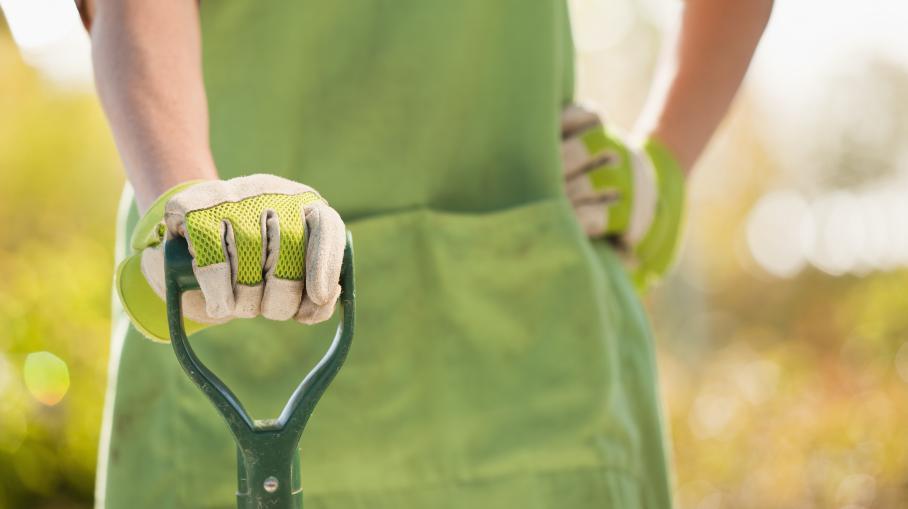 Video jardinier paysagiste un m tier recherch for Paysagiste recherche