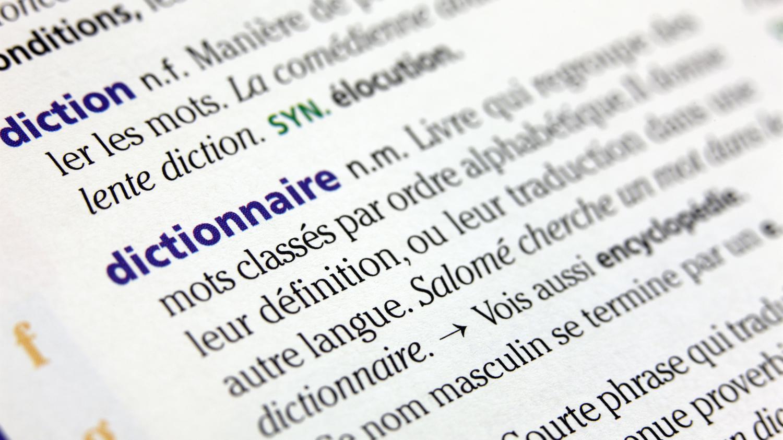 Dictionnaires Quels Sont Les Nouveaux Mots Cette Annee