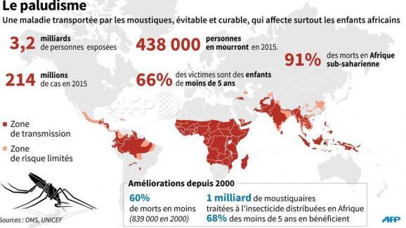 Carte Paludisme Asie Du Sud Est.Paludisme 6 Millions De Vies Epargnees En 15 Ans L Afrique
