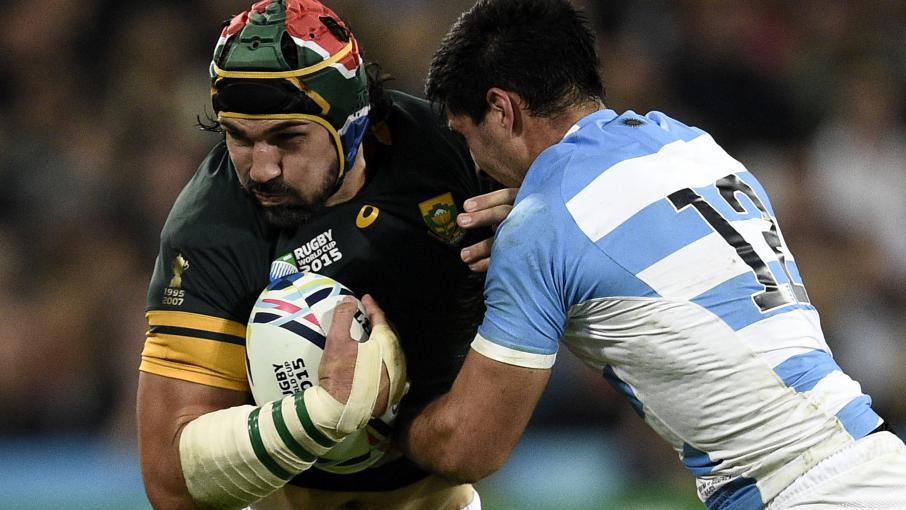 Coupe du monde de rugby l 39 afrique du sud remporte la - Coupe du monde rugby afrique du sud ...