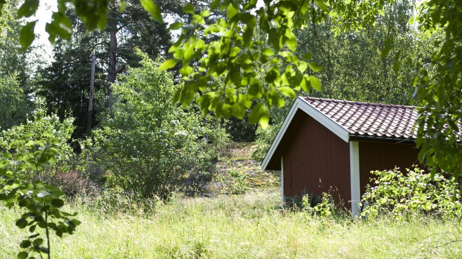 La taxe sur les cabanes de jardin prochaine pol mique for Cabane de jardin soldes