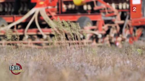 """VIDEO. 13h15. Agriculture : """"Les paysans ne sont pas là pour engraisser un système"""""""