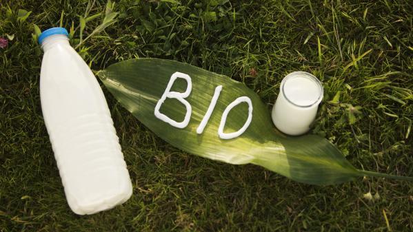 Bio : un marché en pleine croissance