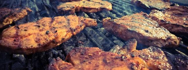 Barbecue adoptez tous les bons r flexes - Table nationale de codage de biologie ...