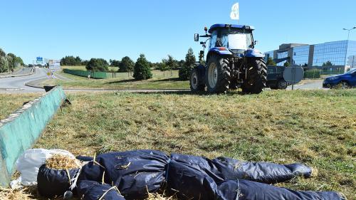 Crise du lait : les négociations échouent avec Lactalis, mais le blocage est levé