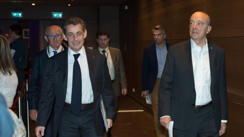 Primaire à droite : Juppé toujours en tête des sondages, Sarkozy ne décolle pas, Le Maire en hausse
