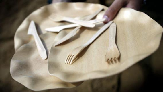 vaisselle jetable quelles solutions pour remplacer le plastique. Black Bedroom Furniture Sets. Home Design Ideas