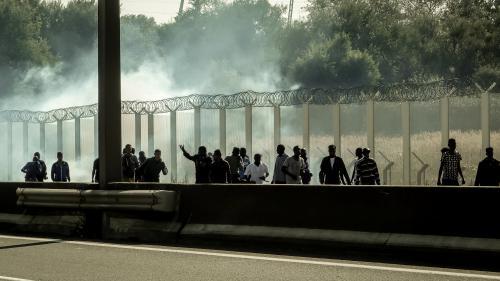 Jungle de Calais : François Hollande annonce le démantèlement