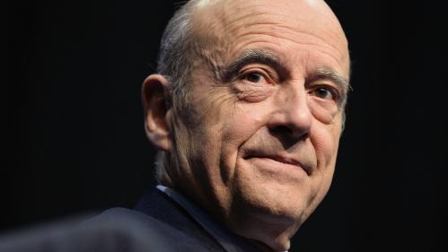 Primaire à droite : Juppé en tête, Sarkozy favori des sympathisants des Républicains