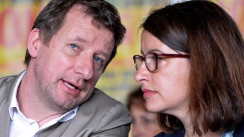 VIDEO. Primaire d'EELV : qui sont les trois candidats qui défient Cécile Duflot ?