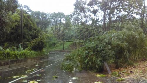 VIDEOS. La Guadeloupe et la Martinique face à la tempête tropicale Matthew