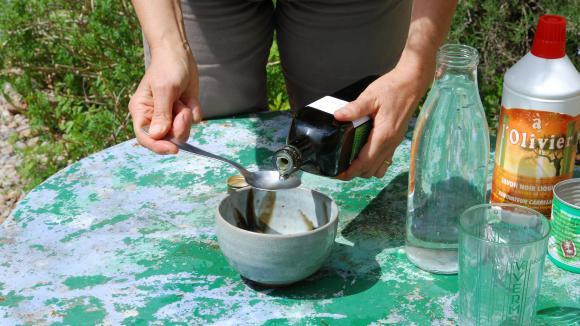 jardin. le savon noir : arme fatale (et naturelle) contre les pucerons