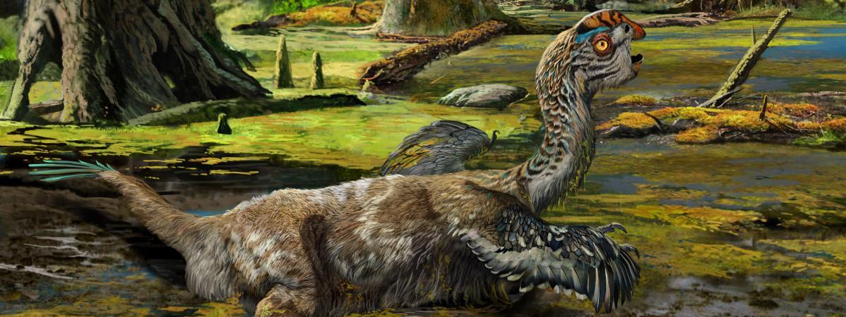 dinosaure datant controverse meilleures applications de branchement gratuit 2013