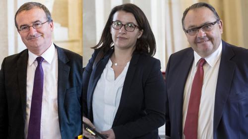 INFO FRANCEINFO. Crise humanitaire à Alep : Cécile Duflot, Hervé Mariton et Patrick Mennucci se rendent en Syrie