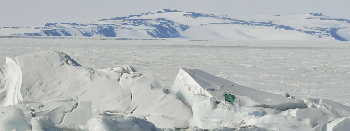 Lamer de Ross en Antarctique, le 12 novembre 2016.