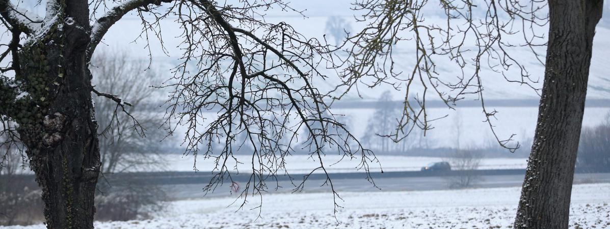 Sortez vos doudounes !!L'Europe va connaître l'hiver le plus froid depuis 100 ans !