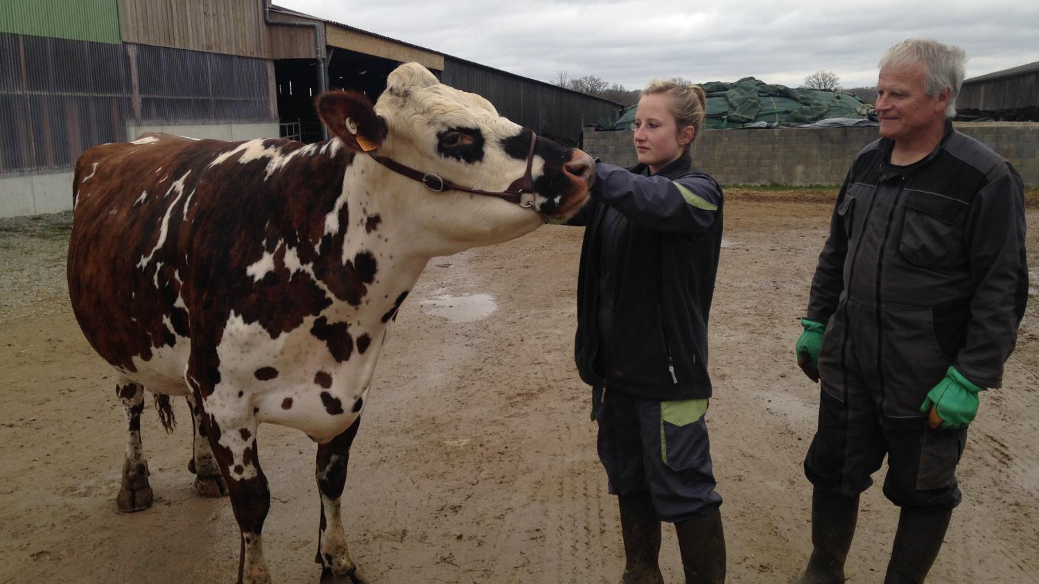 Salon de l 39 agriculture la vache gentiane s 39 appr te for Salon de l agriculture porte m