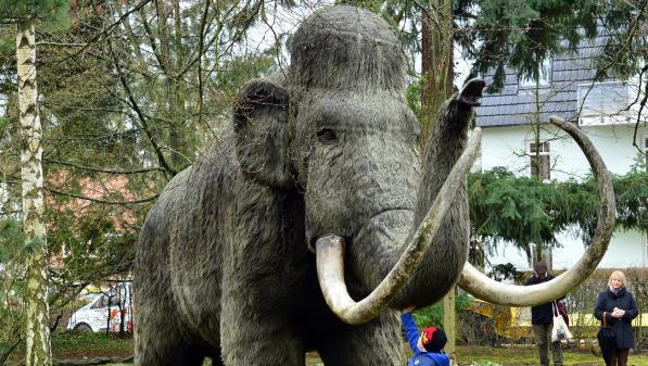 Mammouths laineux, tourtes voyageuses... Ça vaut (vraiment) le coup de ressusciter les espèces disparues ?
