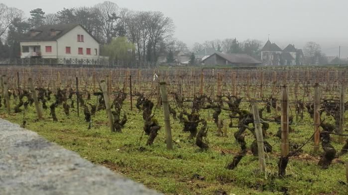 Agriculture : comment la financiarisation des terres piège le modèle français