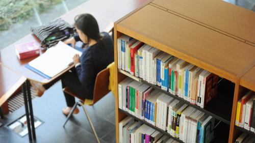 Ce qui fait débat : faut-il instaurer une sélection à l'entrée à l'université ?