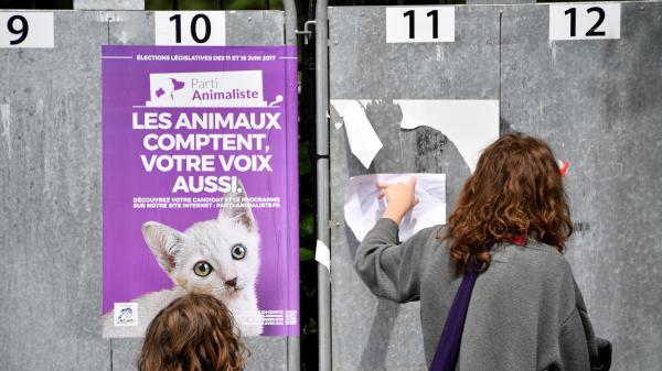 Parti animaliste, Alliance royale, Parti pirate… Qui sont ces petits partis quiseprésentent aux législatives ?