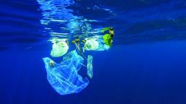 """Environnement : les """"poubelles de la mer"""" arrivent en France"""