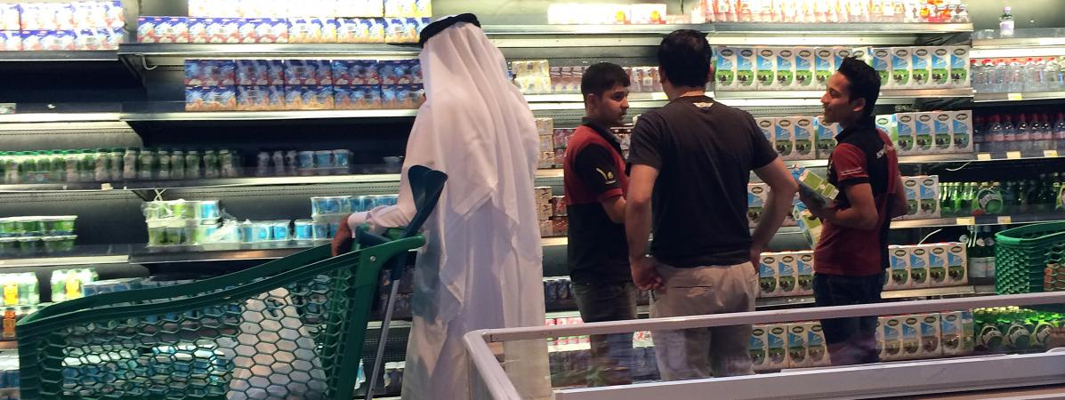 Image result for les vaches pour qatar