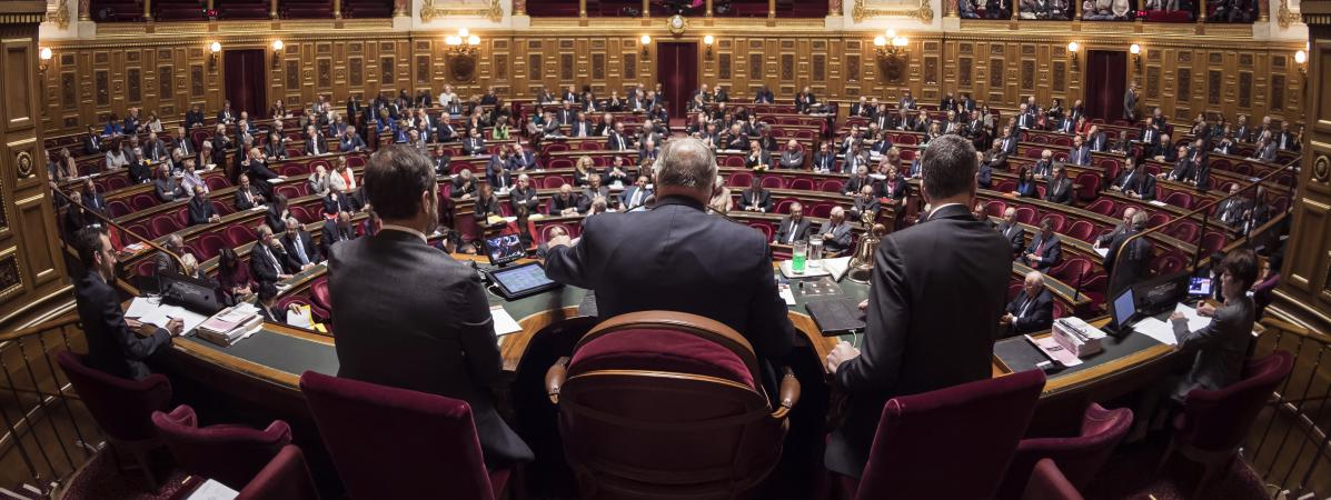 Les sénateurs lors d\'une session au palais du Luxembourg, le 17 novembre 2016, à Paris.