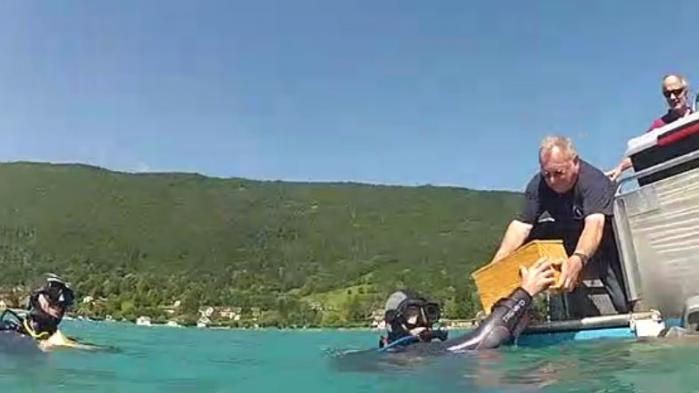 VIDEO. Un caviste immerge 300 bouteilles de vin dans le lac d'Annecy