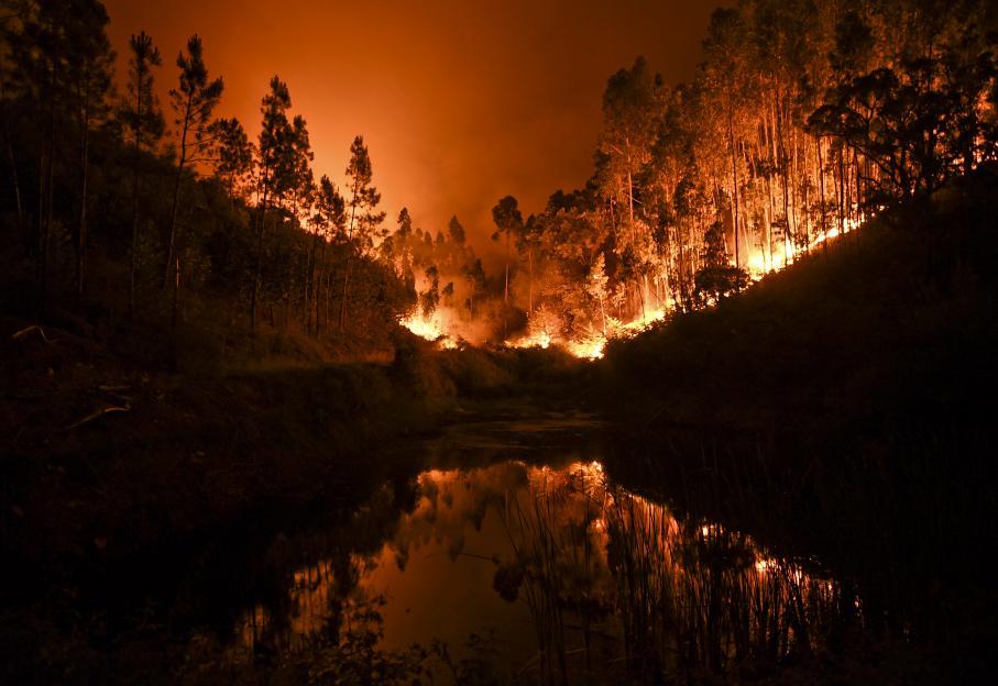 EN IMAGES. Portugal : 12 photos pour comprendre l'ampleur de l'incendie meurtrier