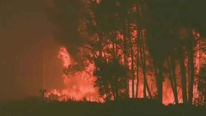 """VIDEO. Portugal : """"La plus grande tragédie de ces dernières années sur le front des incendies de forêt"""", déclare le Premier ministre"""