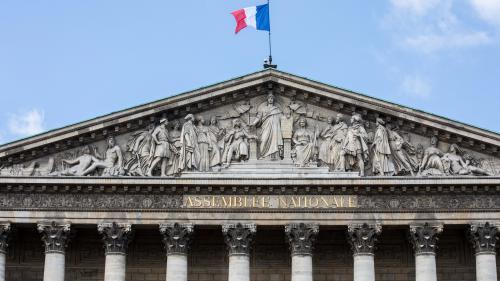 Renouvellement de l'Assemblée nationale : atout ou handicap ?