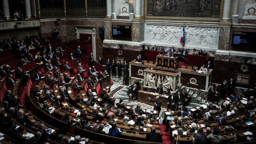 Quels sont les groupes parlementaires qui composeront la nouvelle Assemblée nationale ?