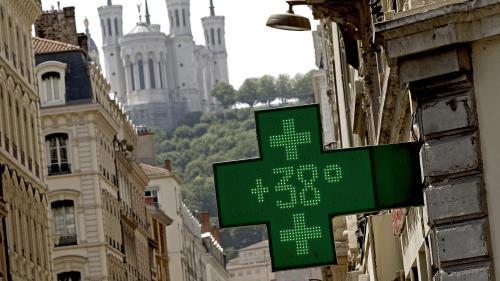 Canicule : quatre écoliers hospitalisés pour hyperthermie en Charente